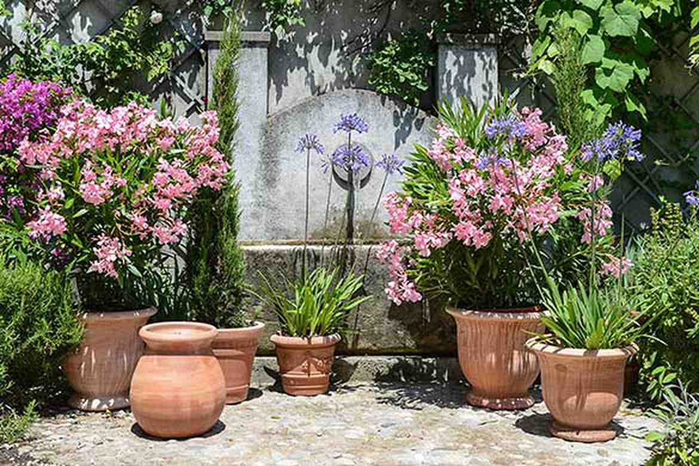 Comment disposer des pots sur une terrasse ?