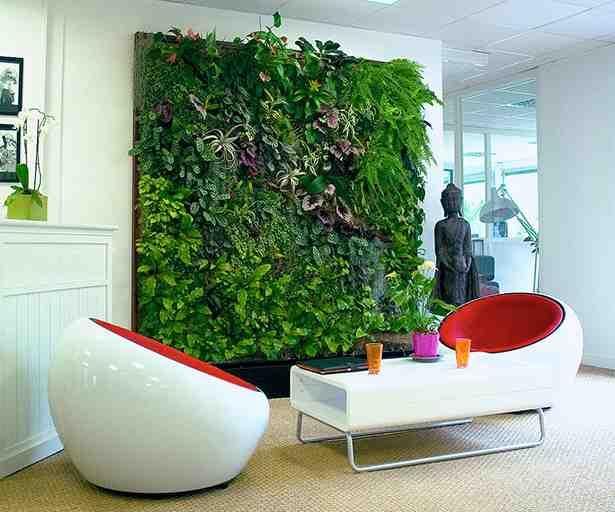 Pourquoi mettre des plantes dans un bureau ?