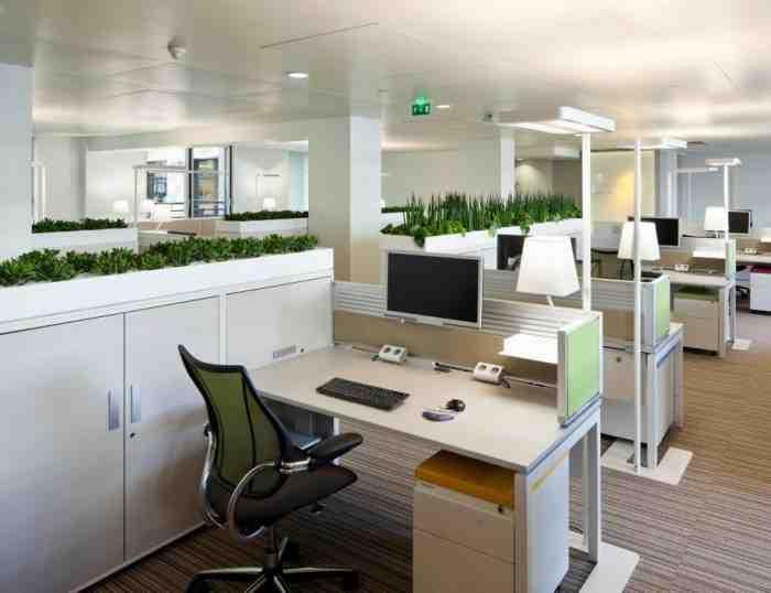 Quelles plantes mettre dans un bureau ?